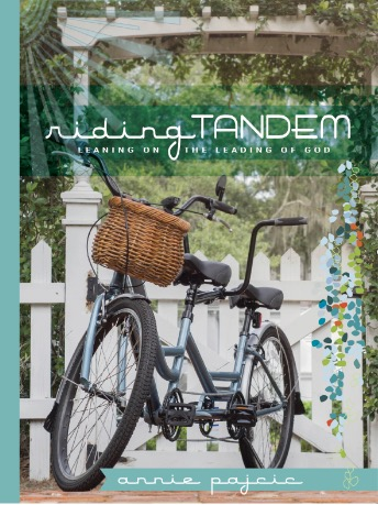 Riding Tandem - Coming Soon! Image